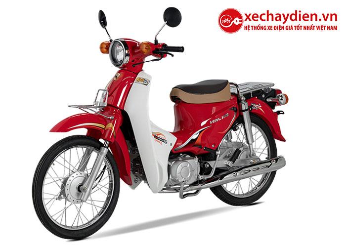 Xe Cub Halim 50cc 2020 màu đỏ mận
